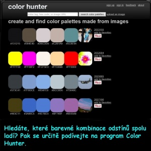 Color hunter a.jpg